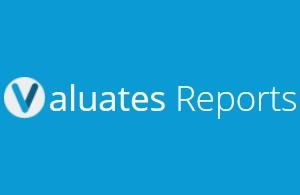 Valuates Reports Logo